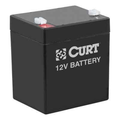 CURT - CURT  Breakaway Battery
