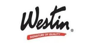 Steps - Oval Steps - Westin - Westin  Platinum 4 Oval Nerf Step Bars